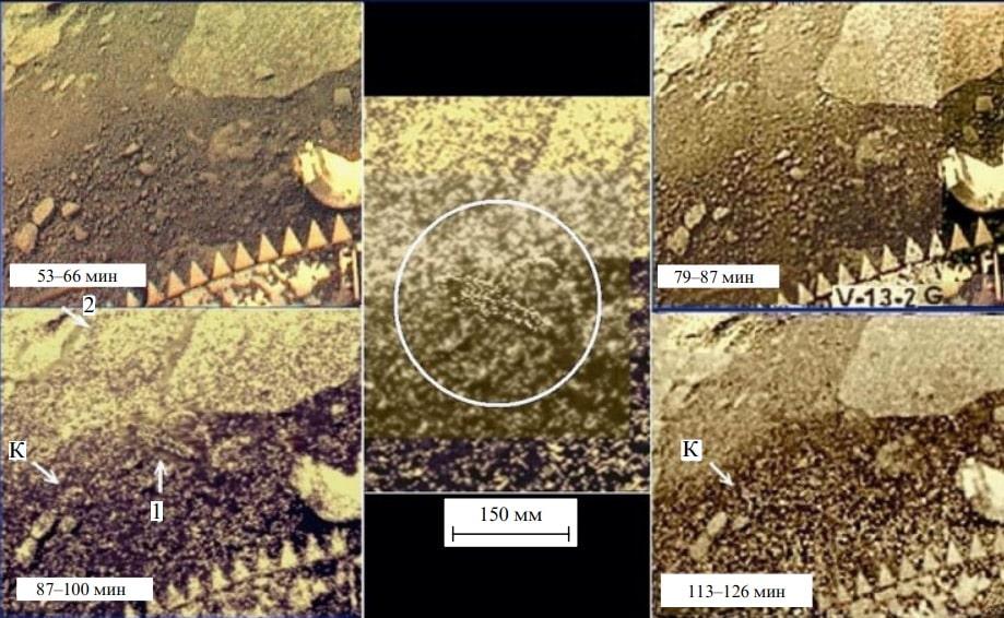 Есть ли жизнь на Венере? Российские ученые нашли на Венере «грибы», «скорпиона» и «ящерицу» 4