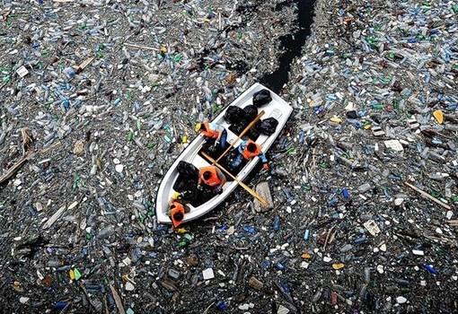 Как долго разлагается мусор 7