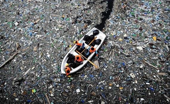 Как долго разлагается мусор 10