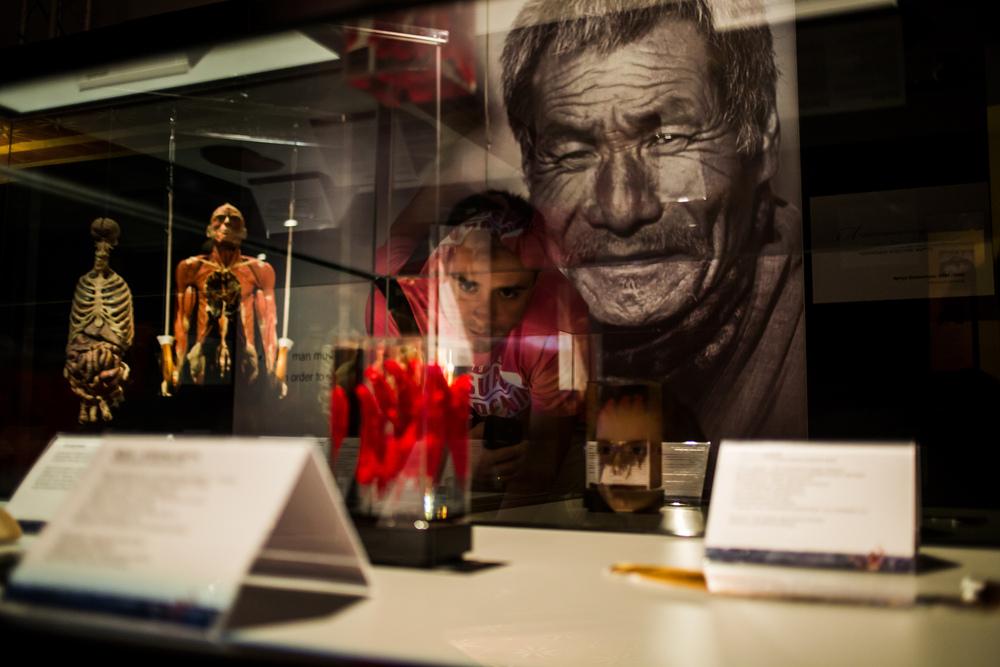 Выставка пластинированных человеческих тел в Киеве 10