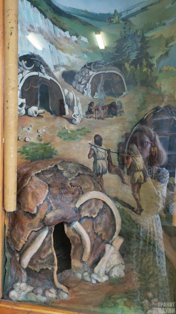 Палеонтологическая гордость Одессы. Фоторепортаж 62