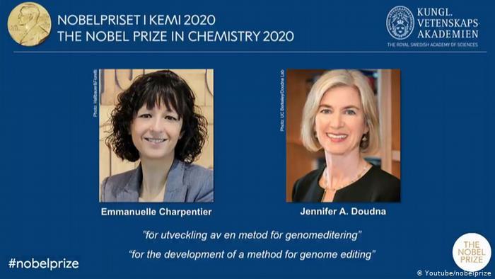 Нобелевскую премию по химии разделят женщины – генные инженеры 2