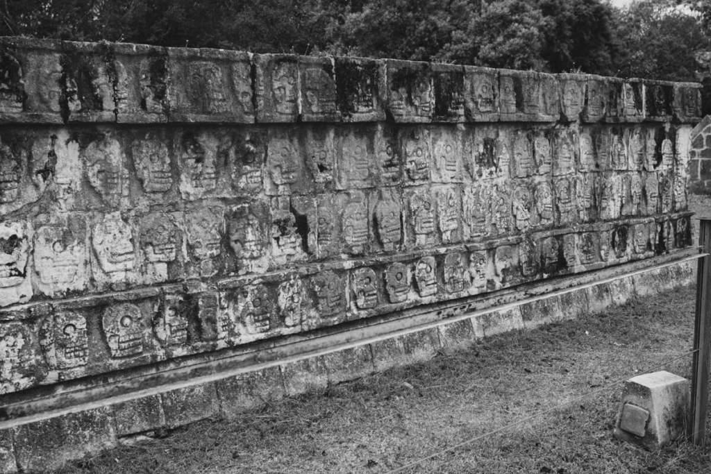 Культурно и общественно исторический проект 11