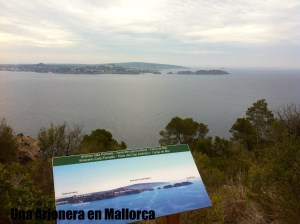 durante la ruta hay carteles informativos, aquí les Illes Malgrats y el Toro