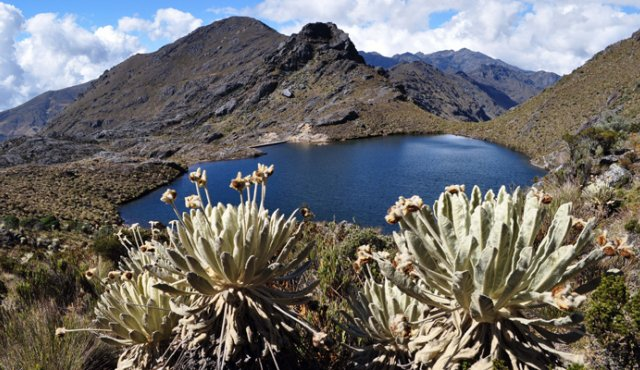 El Comité para la Defensa del Agua y el Páramo de Santurbán, realizan acciones para prevenir los proyectos de minería