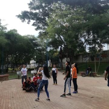 El Parque Los Guayacanes se encuentra invadido de gatos
