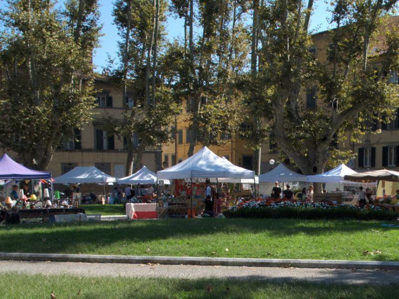 Approvata la mozione sulla permanenza del mercato contadino in Piazza Martiri della Libertà