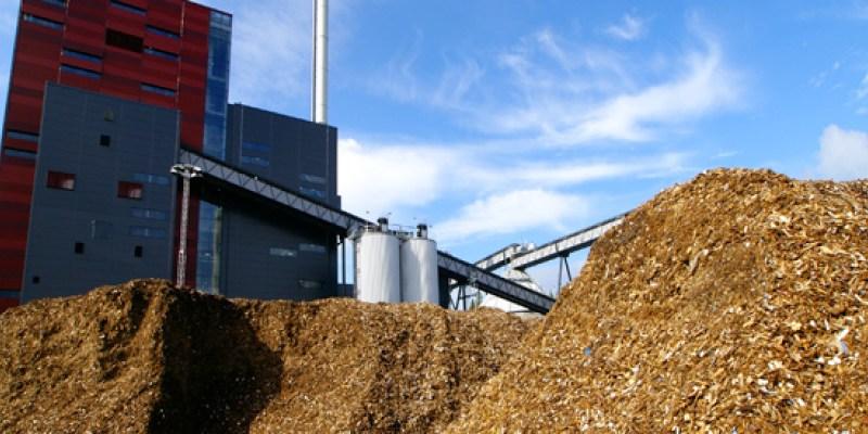 Centrale a biomasse ad Ospedaletto: un'interpellanza per capire le priorità dell'amministrazione