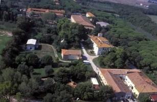 Impianto a biomasse a Coltano: un'occasione persa