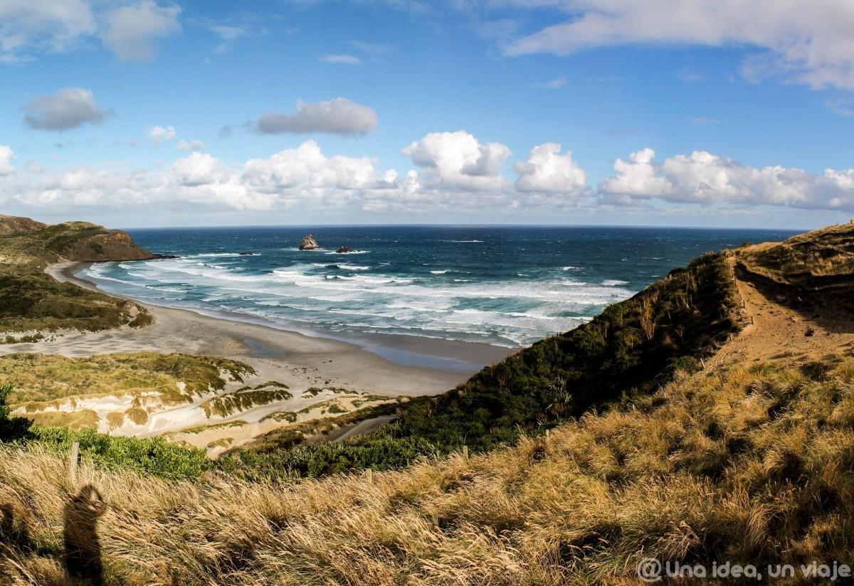 nueva-zelanda-dunedin-peninsula-otago-unaideaunviaje-19