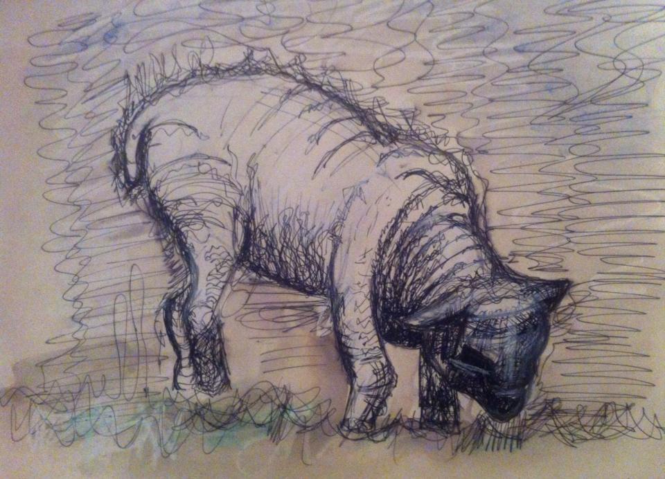 Sheep drawing 2