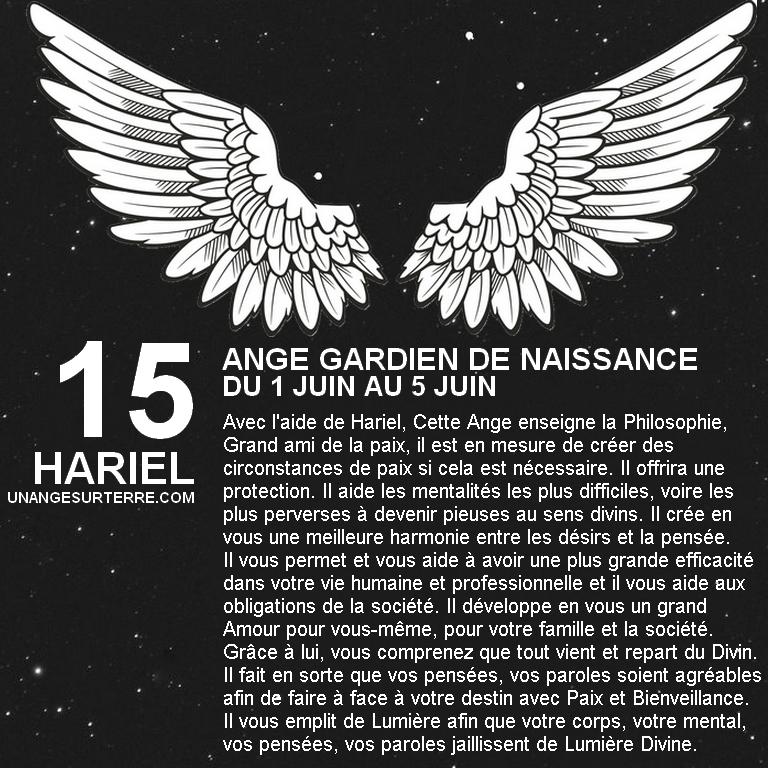 15 - HARIEL.jpg