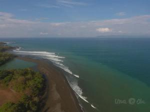 surf reports pavones costa rica