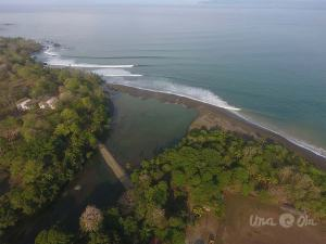 surf report pavones costa rica
