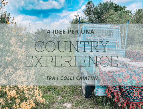 COUMTRY EXPERIENCE
