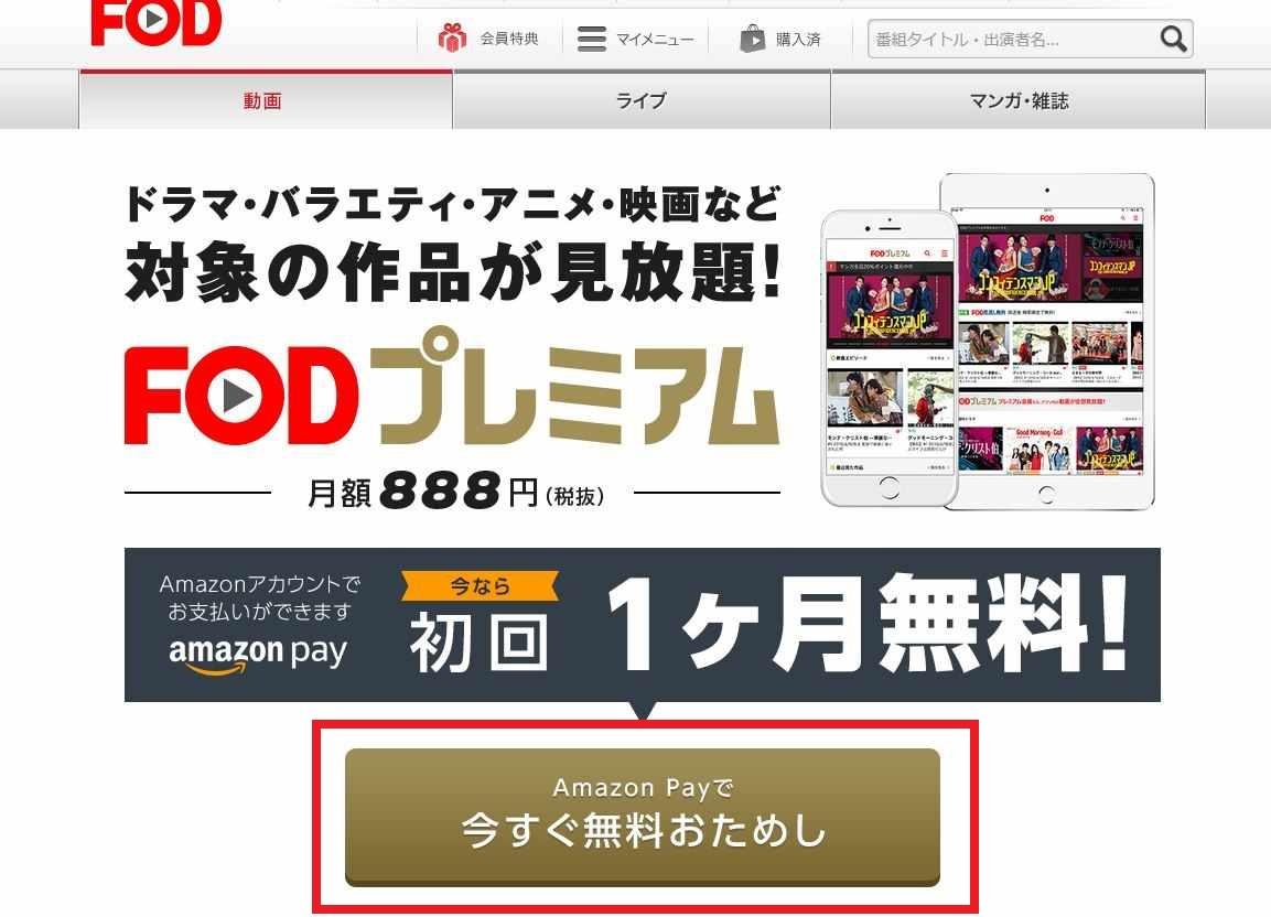 FOD_1_Amazonペイ_R