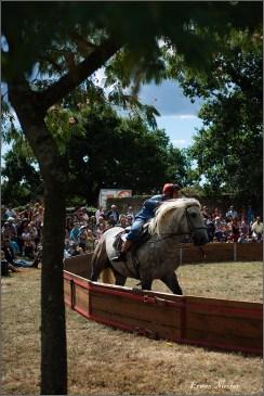 cirque equestre_06