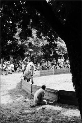 cirque equestre_22