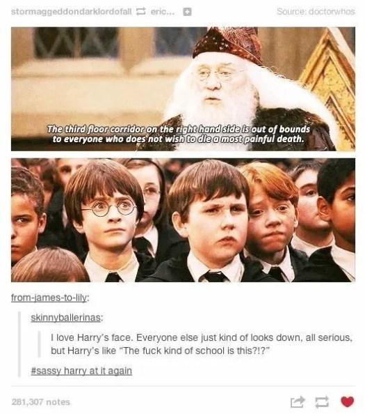 HarryRegretsSchoolChoice