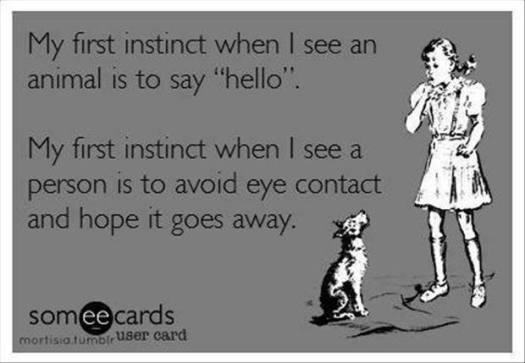 my-first-instinct