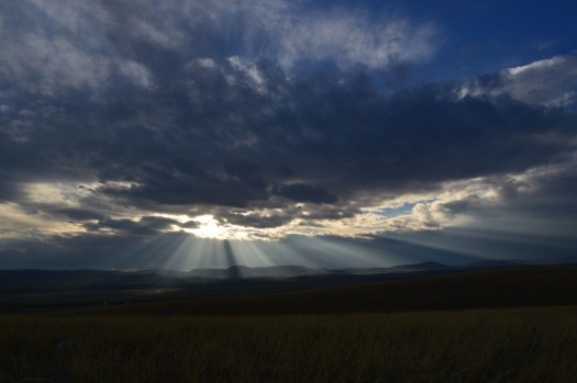 sunbeam2