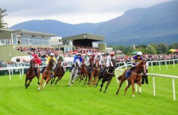 killarney-racecourse