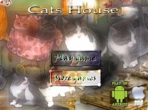 Cats House