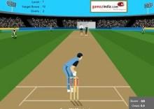 Cricket Master Blaster
