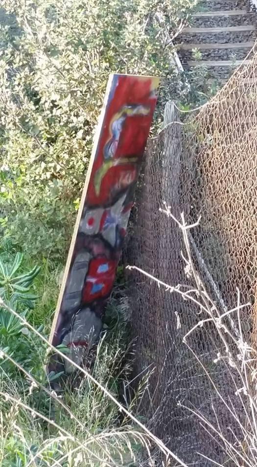 Avvistamento mio 6/12/15 (qualcuno ha evidentemente pensato di toglierlo dalla recinzione e gettarlo...)