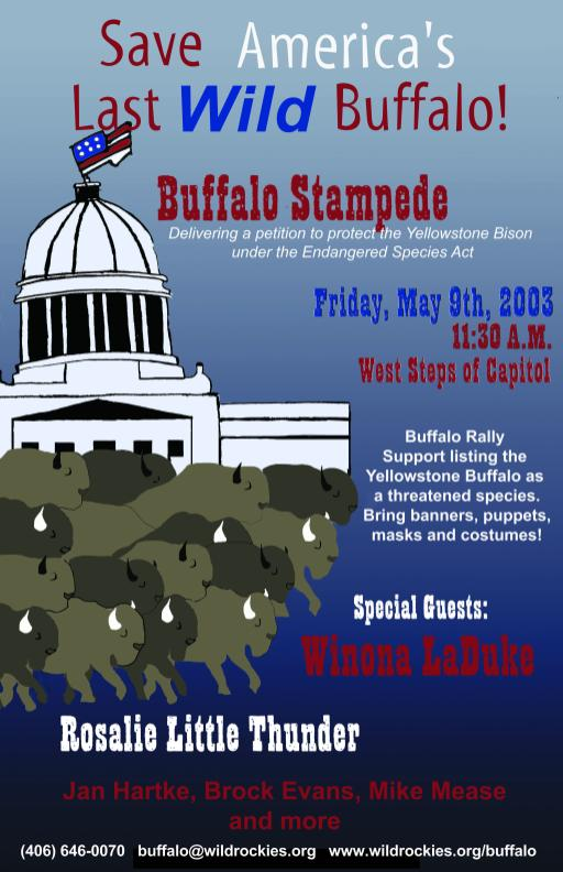Buffalo Field Campaign flyer
