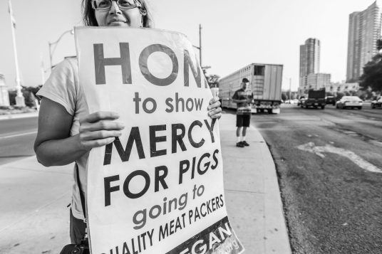 Anita Krajnc holding a sign during a Toronto Pig Save vigil. Canada, 2013.