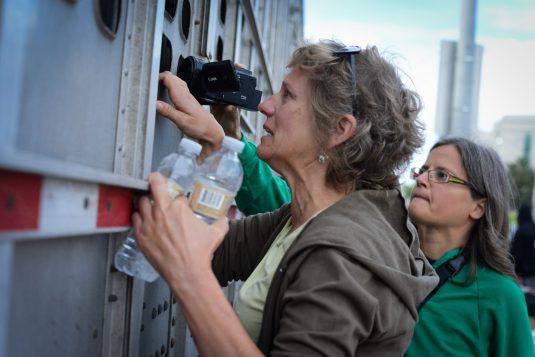 Catskill Farm Sanctuary founder Kathy Stevens bearing witness with Toronto Pig Save. Canada 2013.