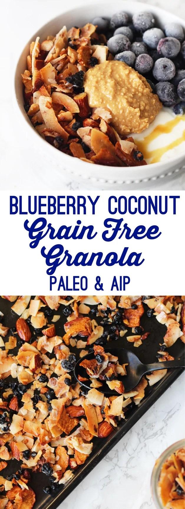 Grain Free Blueberry Coconut Granola (Paleo & AIP)