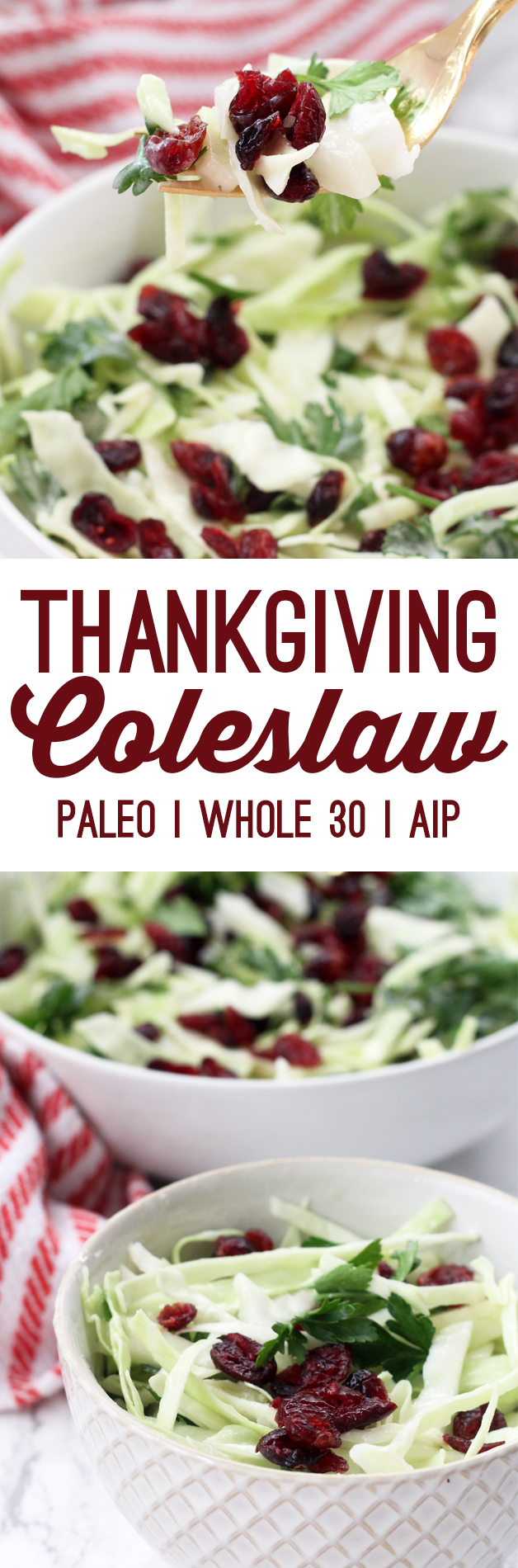 Paleo Thanksgiving Coleslaw (Whole 30, AIP)