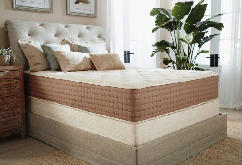 Eco Terra Bed