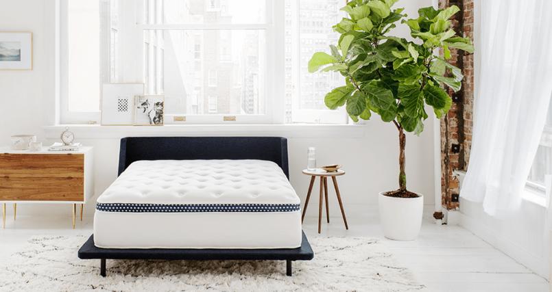 wink bed sale