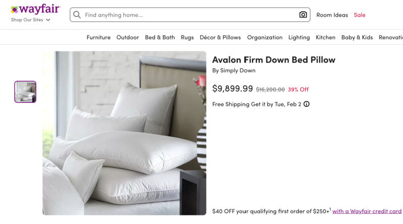 most expensive pillow on Wayfair