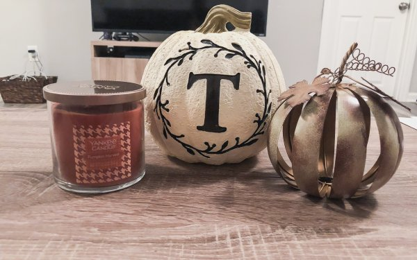 Fall decor: What I got from the Christmas Tree Shop under $10!