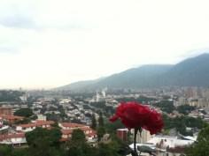 Qué hermosa eres Caracas