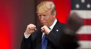 Trump Fighter