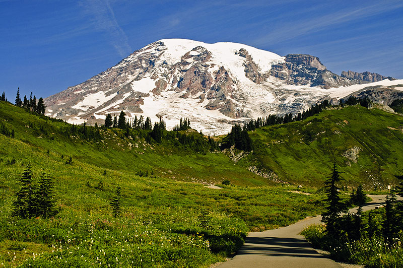 Rainier in Summer, Nikon D70