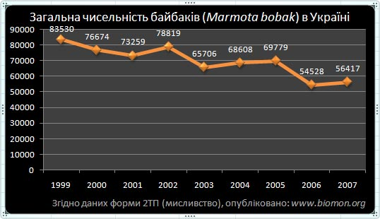 3_6_marmota_bobak.jpg