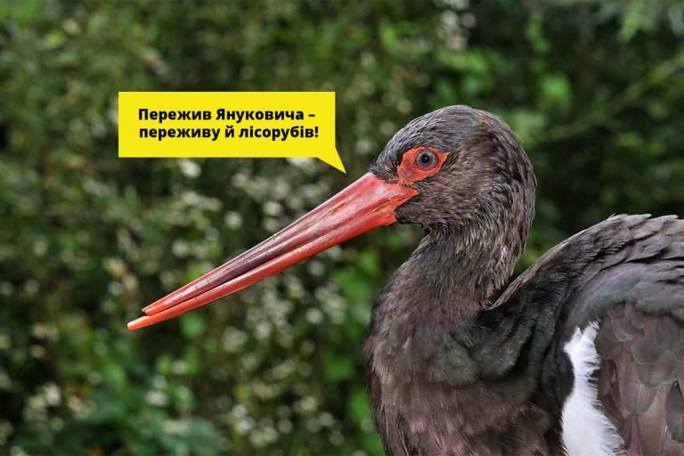 Закликаємо створити Дніпровсько-Тетерівський нацпарк!