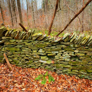 section of a stone wall