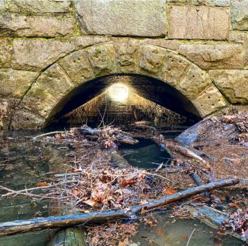 Grubb Run Culvert to the Susquehanna River