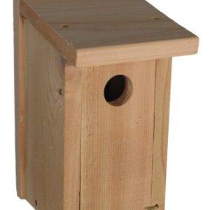 Audubon Bird House