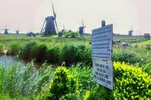 Kinderdijk would be under water were it not for Dutch ingenuity.