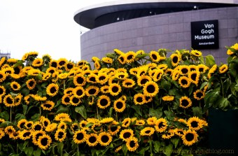 VanGoghEntranceSunflowers-1