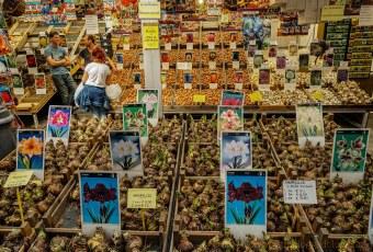 Bloemenmarkt-1