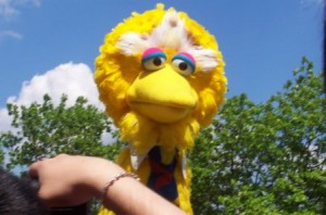 Image: 'Hey Big Bird' http://www.flickr.com/photos/37011448@N00/133728858 Found on flickrcc.net